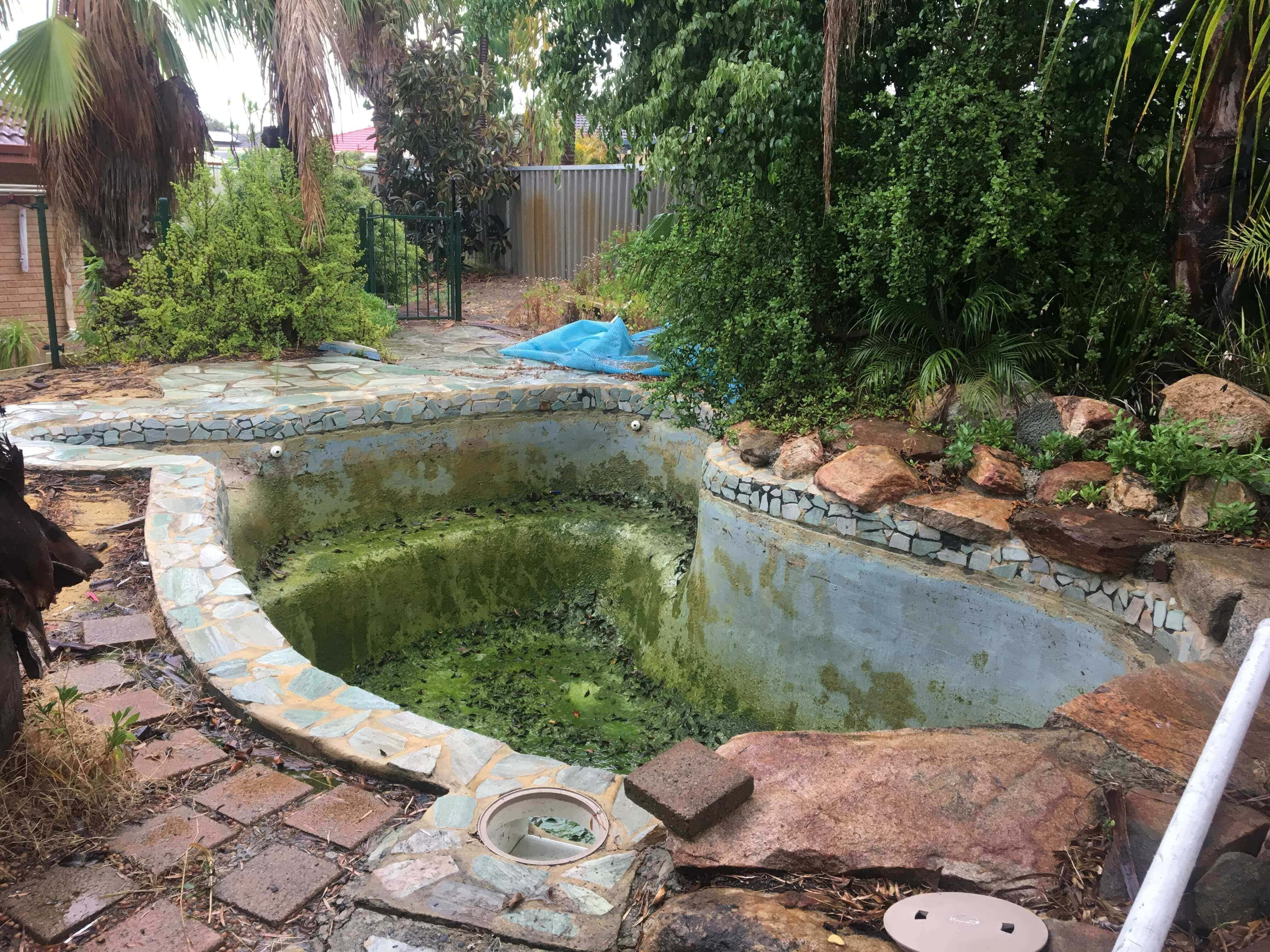 Pool Removal9